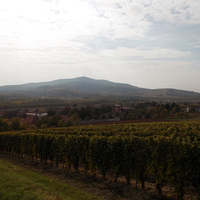 Tokaj-Hegyalja októberben I. - Mindszenthavi Mulatság