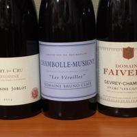 Burgundi szintentartó