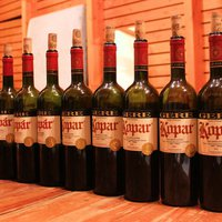 Gere Kopár teljes retrospektív: 1997-2012