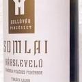 Tegnap ittam - Hollóvár Somlai Hárslevelű 2005
