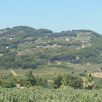 Dél-francia kalandozások II. Egy csipetnyi Provence