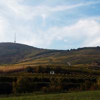 Tokaj-Hegyalja októberben II. - Hímesudvar, Erzsébet Pince, Árpád-hegy, Tokaj-Hegyalja Piac