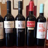 Rioja kóstoló a Vino Castillo-ban