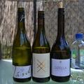 Néhány bor vasárnapról