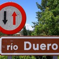 Spanyol vörösborok: Ribera del Duero