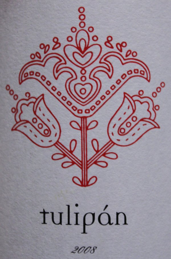 tulipan2.jpg