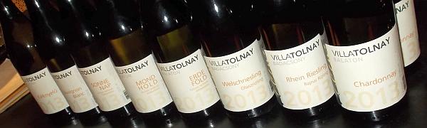 villatolnay3.jpg