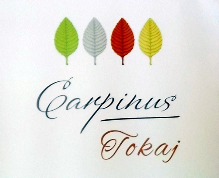 carpinus2015_1.jpg