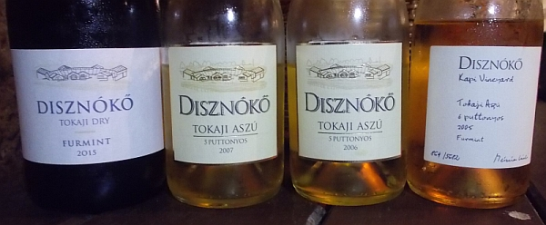 disznoko_b3.jpg