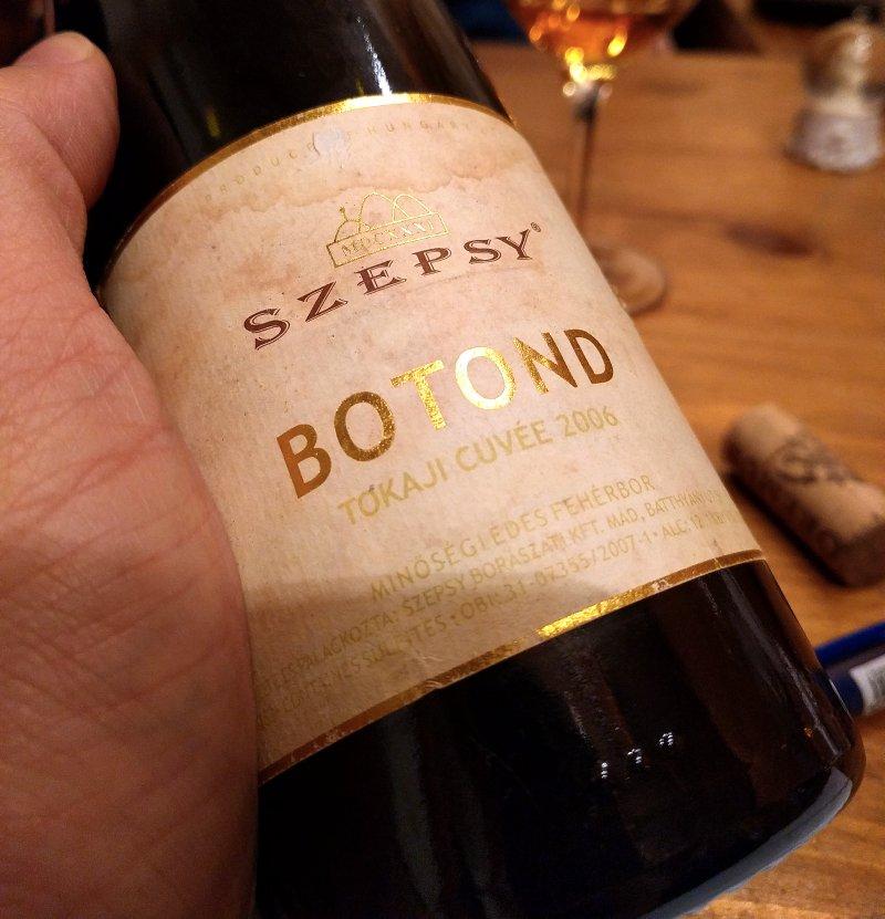 szepsy_botond_2006.jpg