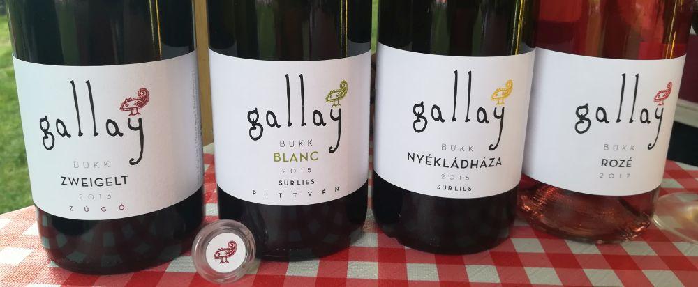 gallayrosalia2.jpg