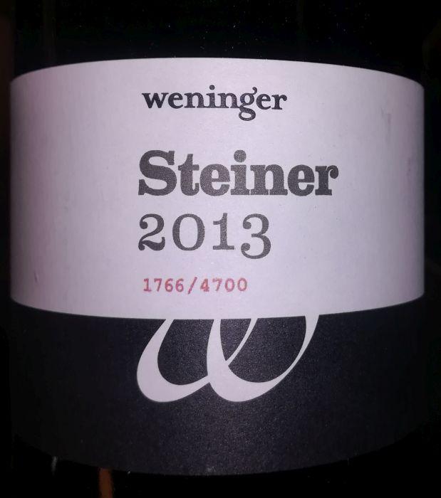 weningersteiner2013.jpg
