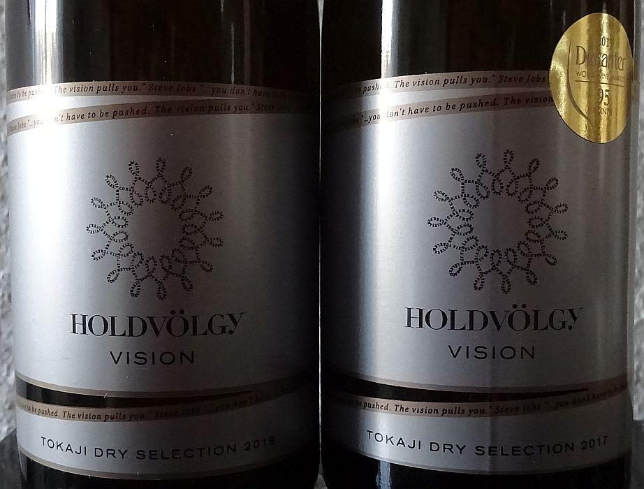 holdvolgyvision20172018.jpg