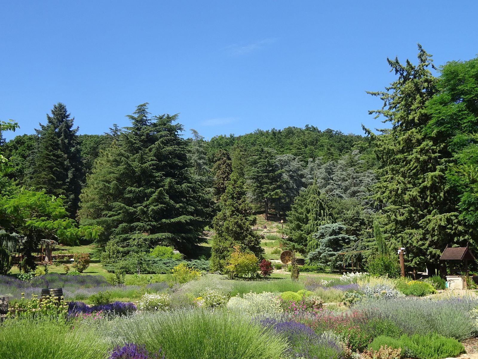follyarboretum1.jpg