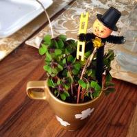 Bögréből virágcserép -  Újévi köszöntő, vendégváró ajándék septiben