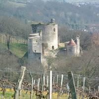 Chateau Langoiran 'Prestige'