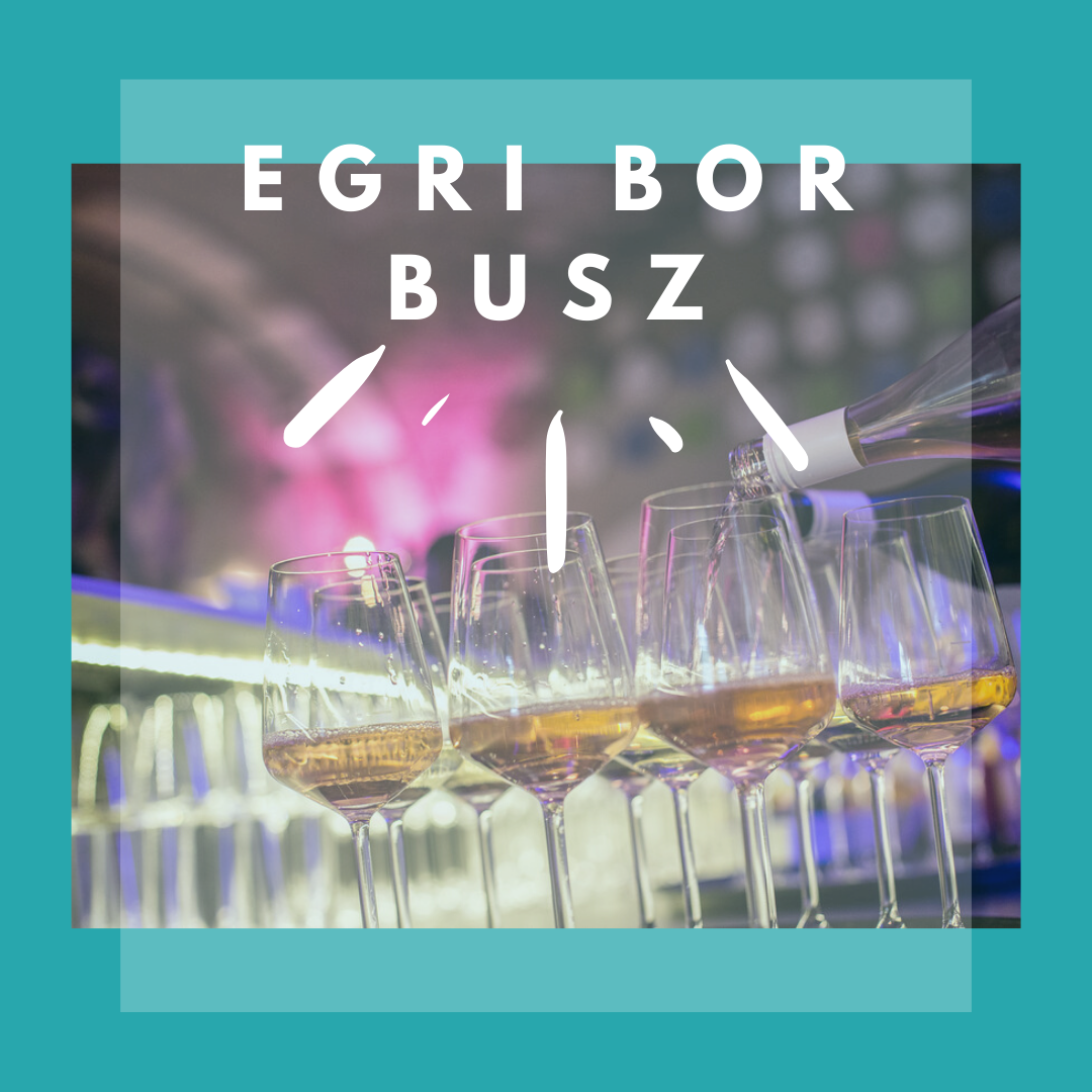 egri_bor_busz_kreativ1.png