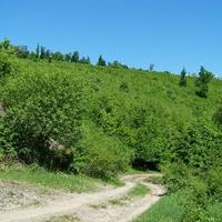 2011. május 5. Északi végeken (Bernecebaráti - Óhájak - Honti-szakadék- Deszkáspuszta - Drinó-völgy - Drégelyvár -  Drégelypalánk vá.)