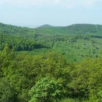2010. május 1. Nagybörzsöny - Hosszú-bérc - Zálog-bérc - Halyagos - Csóványos - Szaszovszky-kereszt - Diósjenő