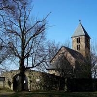 2010. március 20. Nagybörzsöny - Gömbölyű-kő - Kis-Koppány - Bezina-völgy - Kisinóci th. - Királyrét
