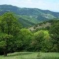 2012. május 19. Diósjenő - Verebes-kaszáló- Csóványos - Mogyorós-bérc - Miklós-bérc - Kemence - Tésa - Ipolyvisk (Vyškovce nad Ipľom)