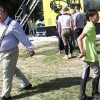 Repedező Fidesz-falak?