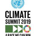 Klímaszorongás helyett cselekvési terv