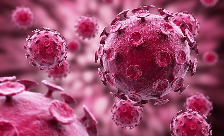 influenza_immune_response.jpg