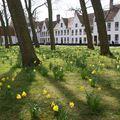 A tavasz megszámlálhatatlan pillanata