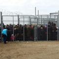 A Stop Soros miatt is folytatódik a kötelezettségszegési eljárás Magyaroszág ellen