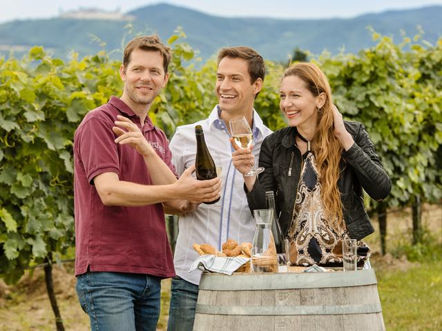 Az alsó-ausztriai BorŐsz húsz éve: borbarát fesztiválsorozat szokásokkal és élvezetekkel