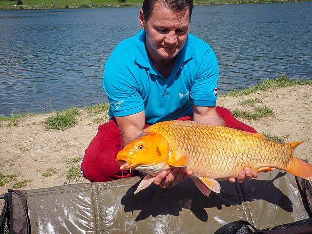 Erdei Zsolték győztek a Fishing and Hunting horgászversenyén