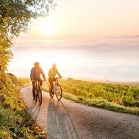 Alsó-Ausztria két keréken: élményteli kaland, sportos kikapcsolódás az egész családnak, időutazóknak és ínyenceknek is!