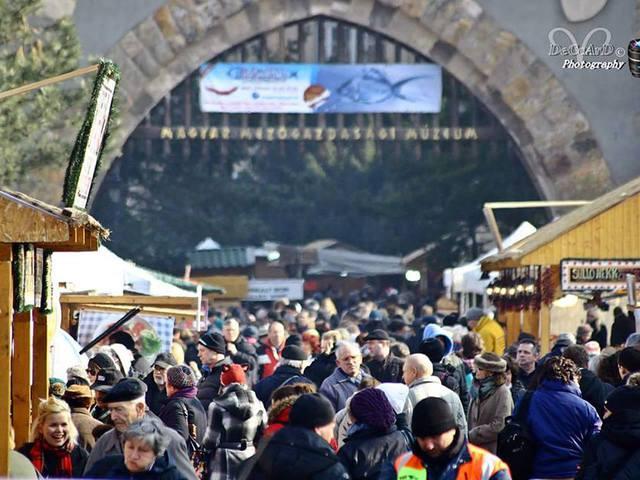 A Budapesti Halfesztivál a Millenáris Parkba költözik