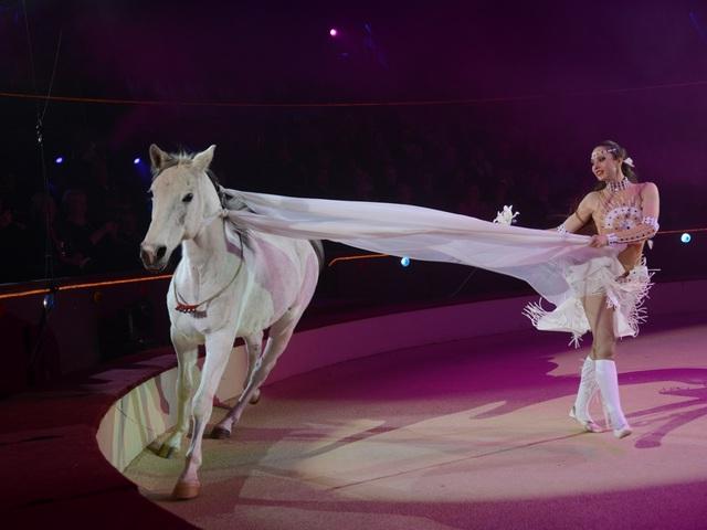 Elkezdődött a Budapesti Nemzetközi Cirkuszfesztivál!