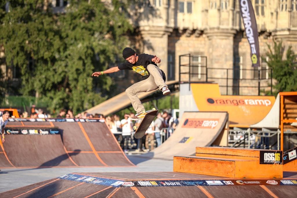 robin_bolian_skateboard.jpg