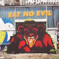 Majmok az Óbudai Gázgyár területén