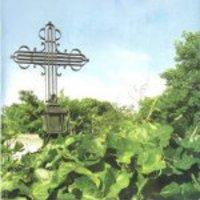 Légifotón látszik, ahogy Újpalota ráépül a Pestújhelyi temetőre