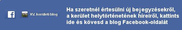 facebook_kovetes.jpg