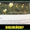 BIBLIOLÓGIA
