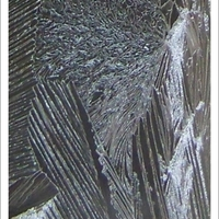 Jégvirág, jégpáfrányfenyő