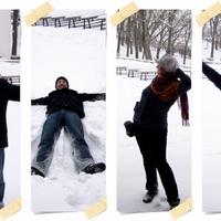 Térdig hóban sérült cinke