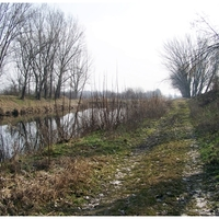 Csati-parton (2011. 02. 25.)