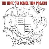PJ Harvey: The Hope Six Demolition Project ajánló