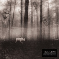 Trillion: Dreaming Black ajánló