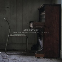 Antonymes: (For Now We See) Through a Glass Dimly ajánló