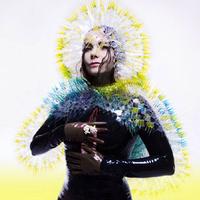 Björk: Vulnicura kritika (ajánló)
