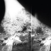 Godspeed You! Black Emperor: Asunder, Sweet and Other Distress kritika (elemzés)