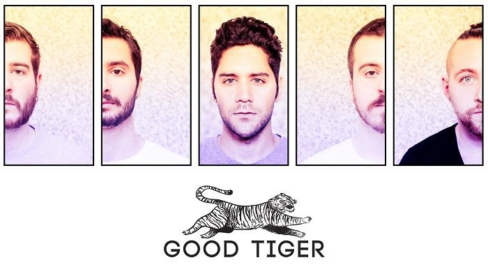 good_tiger.jpg