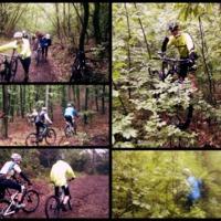 Mai bringázás - Keszthely, kerékpárteszt